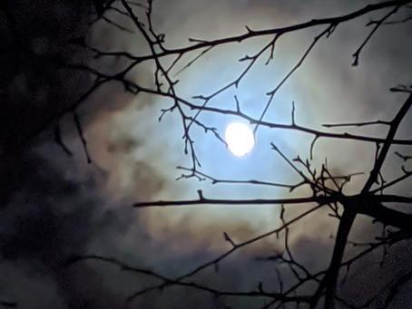 Soin de la pleine lune
