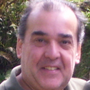 www.sobrevivencianotransito.com.br