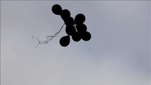 'The Black Balloons' 2018