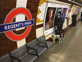 Regent's Park poster 2018