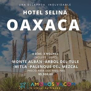 Oaxaca Hotel Selina.png