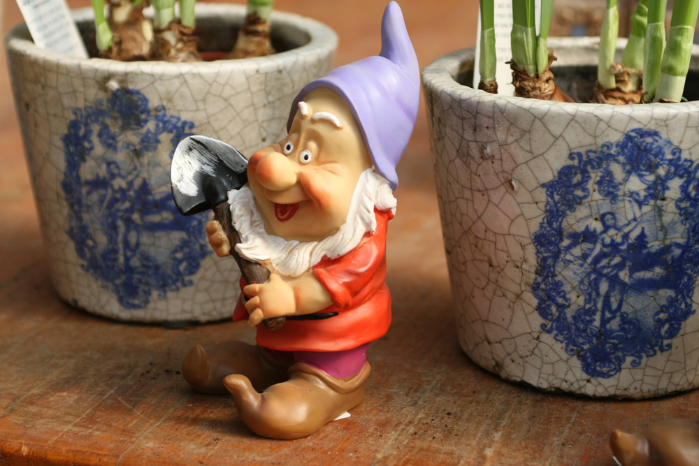 garden gnome with plants