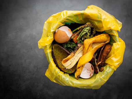 Ready to Start Composting?!