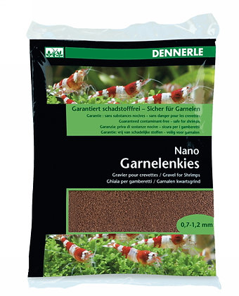 Nano Garnalengrind Borneo bruin
