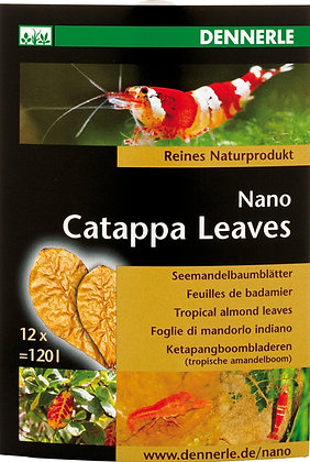 Dennerle Catappa bladeren nano