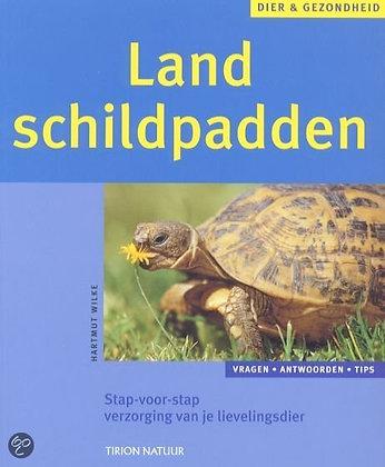 Schildpadden / Landschildpadden