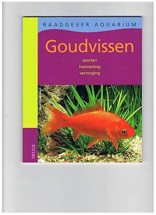 Vijver / Goudvissen