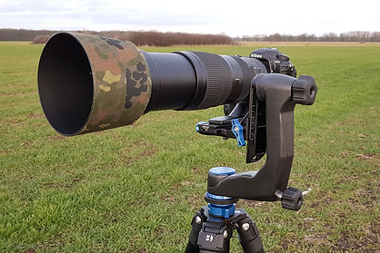 Głowica Benro GH5C - D500 + Nikkor 200-500/5.6VR