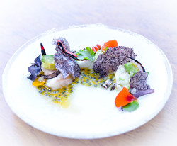Spiny Lobster Ceviche