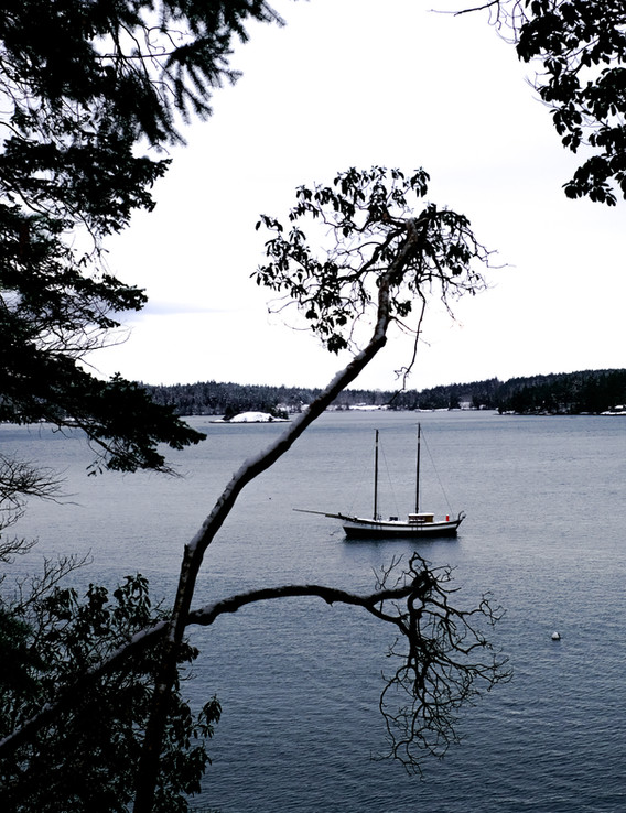 Sailboat in the cove