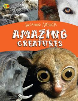 Amazing_creatures copy