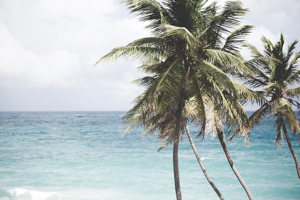 Barbados_2014-102.jpg
