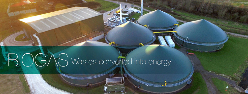biogas-renewal-energy.jpg