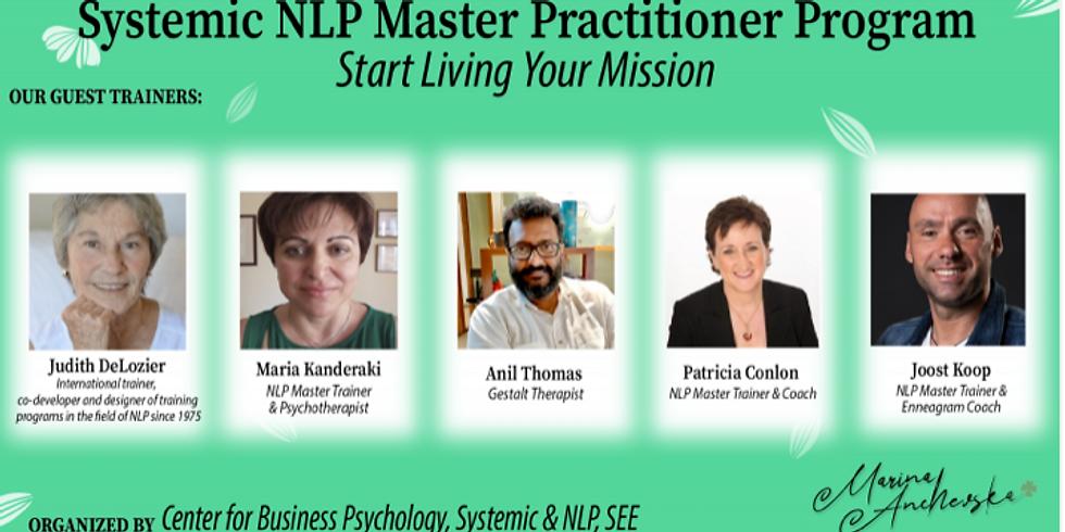 Modelling - systemic NLP Master Practitioner Program