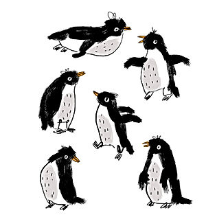 Appreciation for Penguins