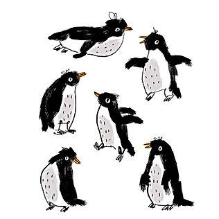 Appreciation for Penguins