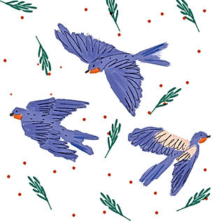 Fleeting Birds