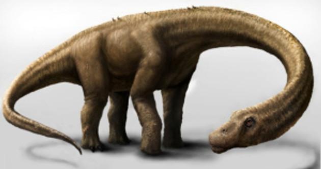 Titansaur discovered