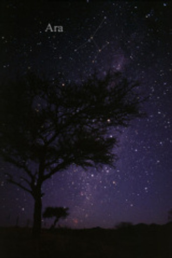 Constellatiion Ara
