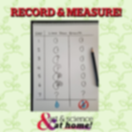 RECORD & MEASURE growth chart.png
