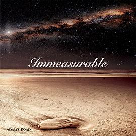 Immeasurable Album Adam's Road