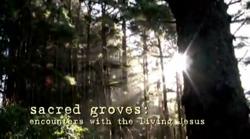 Sacred Groves Interviews