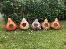 Gourds May 22, 2021