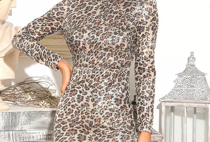 Sheila Long sleeve Dress
