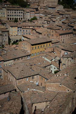 Urbino AFV benefit trip