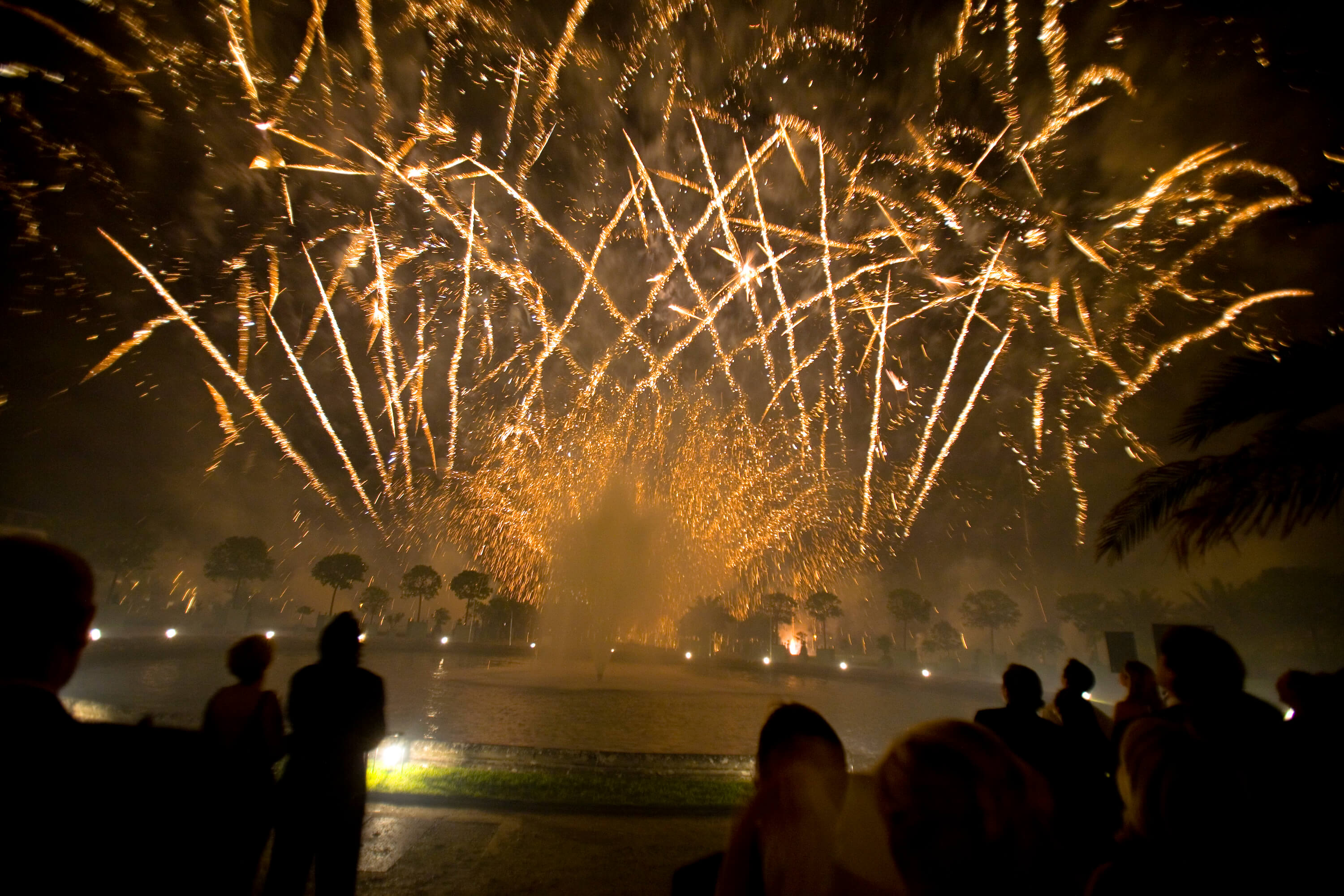 Fireworks at Versailles
