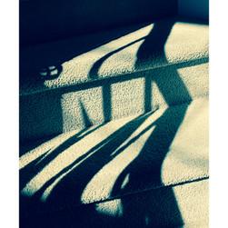 shadows7.jpg