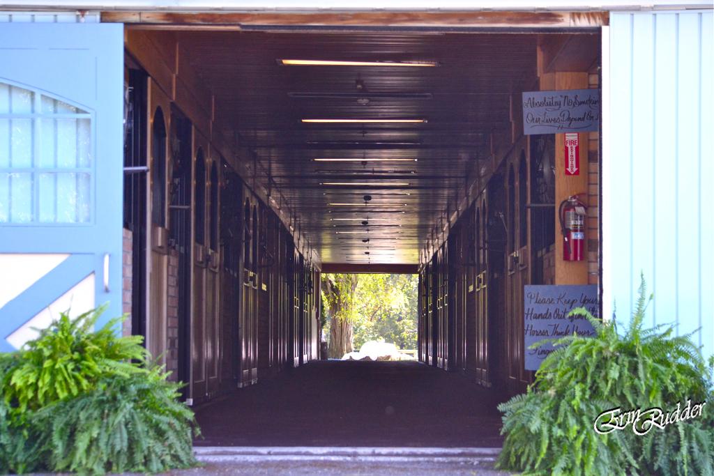 One Show Hallway at Walnut Way