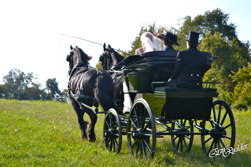 Wedding arrival by Carriage