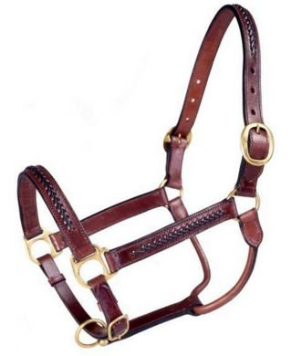 JT INTERNATIONAL Royal King Braided Leather Halter