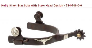 JT INTERNATIONAL MEN'S Kelly Silver Star Spur with Steer Head Design
