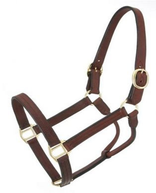 JT INTERNATIONAL Royal King Leather Track Halter