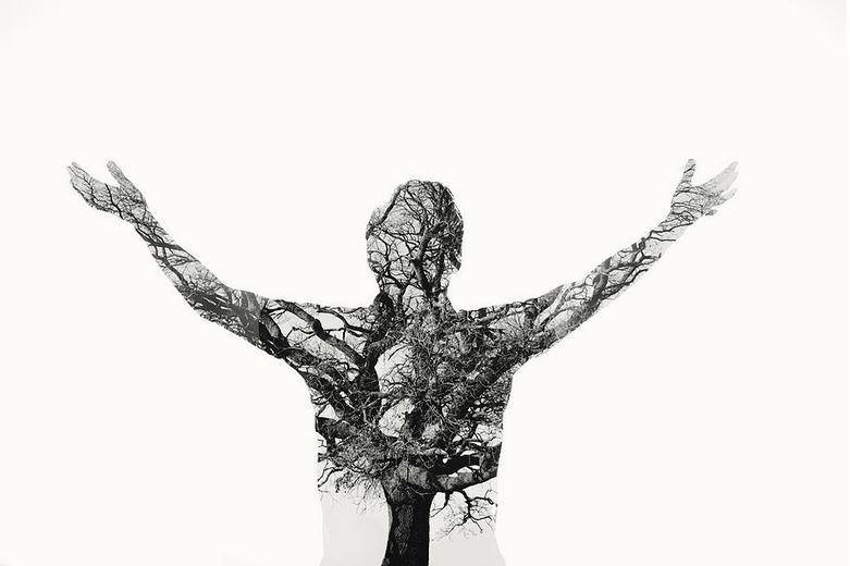 Freedom - Double Exposure Man With Tree  by Themacx