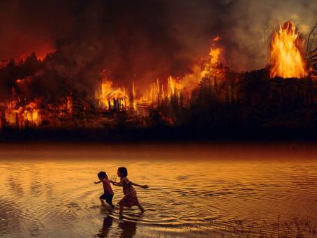 【亞馬遜雨林大火 與 集體意識的選擇】 ─ 可以選擇明天便終止對雨林的破壞,我們卻永不會做