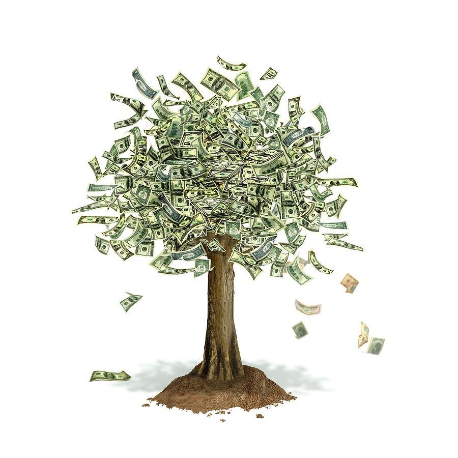 money-tree-conceptual-artwork by leonello-calvetti
