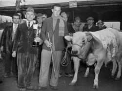 fiera del bue grasso 1934-55 069