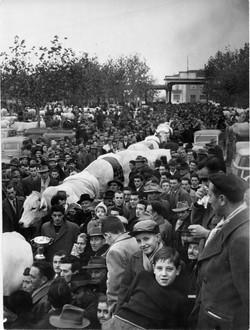 fiera del bue grasso 1934-55 066
