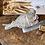 Thumbnail: Sage starter kit