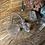 Thumbnail: Quartz pendulum