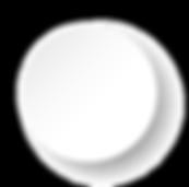 circulo blanco_Mesa de trabajo 1.png