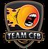 TeamCFB-logo.png