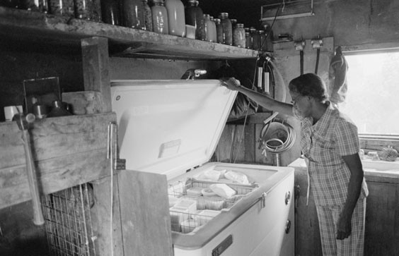 Early History Of Food Freezing At Home