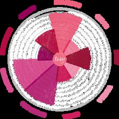 Ruby Chocolate Tasting Wheel