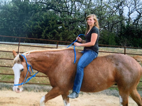 Confessions of a Horse Girl part 3