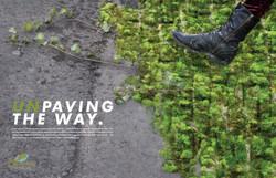 Greening of Detroit