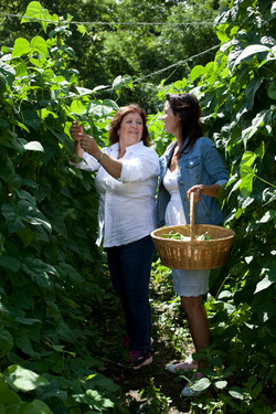 Julie Taboulie Mama's Garden